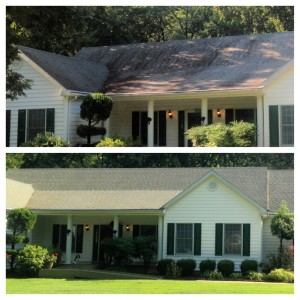 Cambridge Roof Cleaning