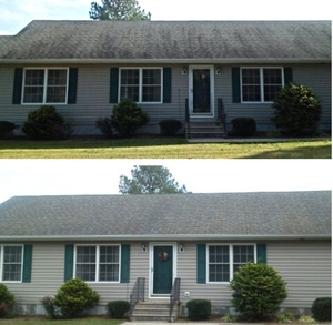 Maryland and Delaware Roof Cleaning