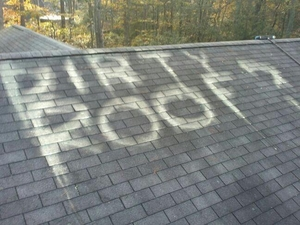 Maryland Roof Cleaning